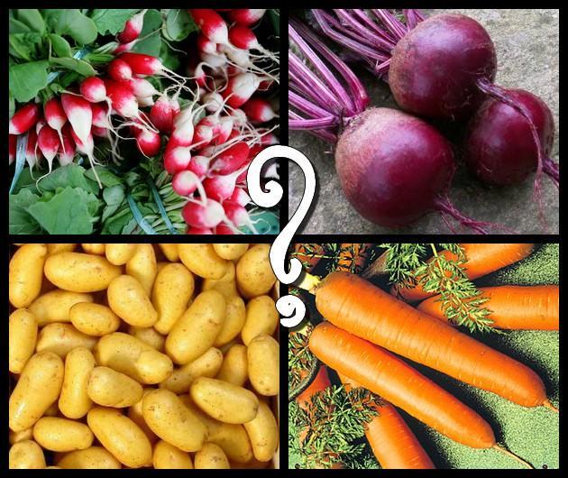 Lequel de ces légumes n'est pas une racine ?