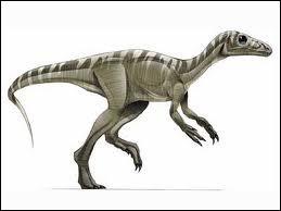 De quel pays vient l'Eoraptor ?