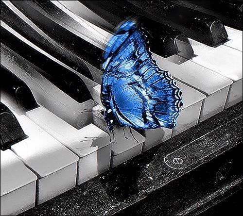 Le piano est un instrument à cordes...