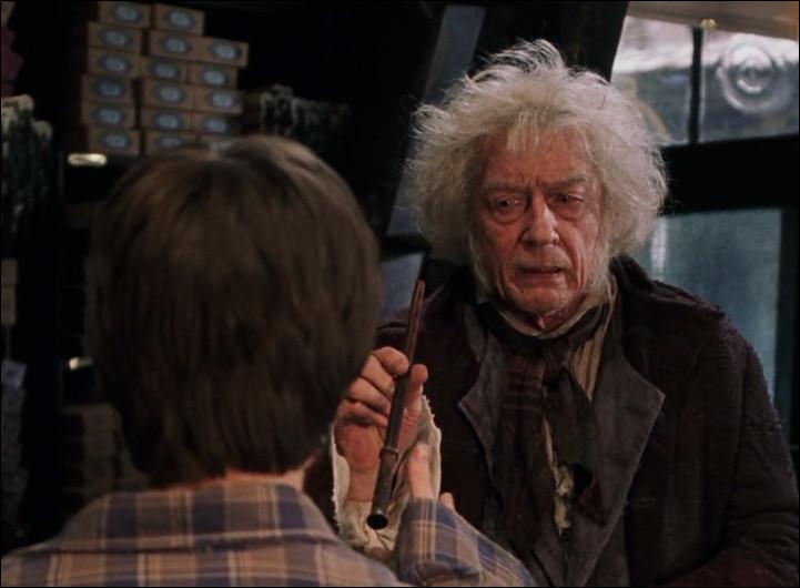 Chez Ollivander, que casse Harry avec la seconde baguette qu'il essaye ?