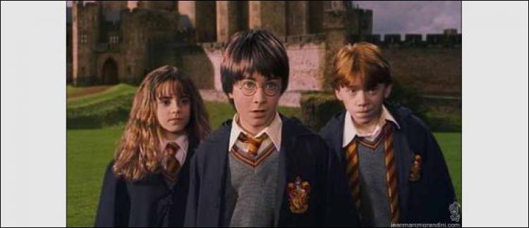 Quand Harry, Ron et Hermione vont voir Hagrid pour obtenir des informations sur l'homme qui lui a donné l'œuf de dragon, après que la cicatrice de Harry lui ait fait mal, que fait le gardien des clés ?