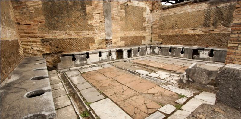 On trouvait dans les villes romaines de nombreuses latrines publiques et privées. Qu'utilisaient les romains pour s'essuyer à la place du papier hygiénique moderne ?