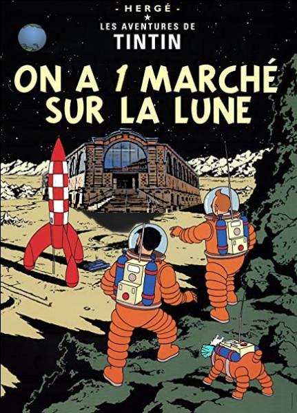 En voilà qui se la coule douce... et qui font leurs courses tranquillement sur la Lune ! Mais il y a un petit détail, tout de même, un peu bizarre ?
