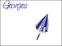 Gentleman-cambrioleur, c'est Georges...