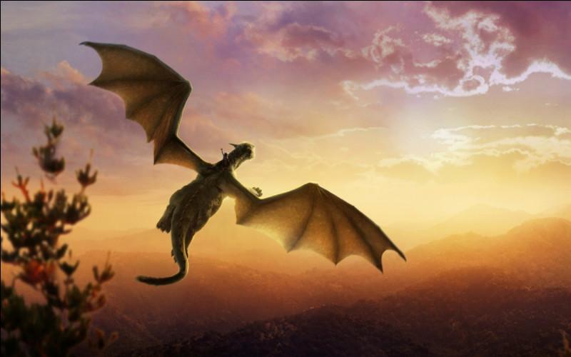 Comment les dragons se déplacent le plus rapidement ?