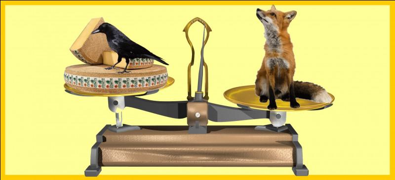 Un renard roux est plus lourd qu'une meule de Comté et un grand corbeau. Êtes-vous d'accord avec la balance ?