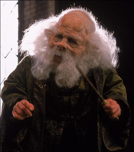 """Professeur Flitwick : """"Quel sort sert à déplacer les objets ?""""Toi : """"Oh, ..."""""""