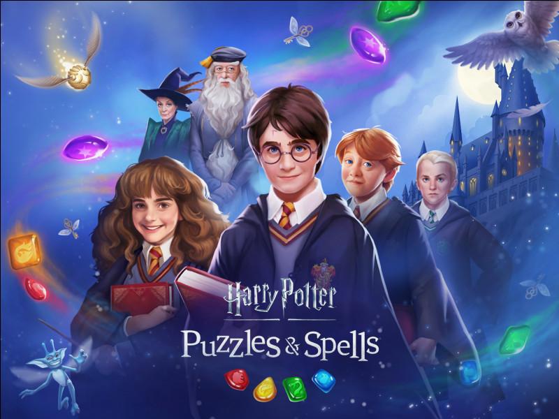 Comment s'appelle le professeur qui avait Voldemort sur la tête ?