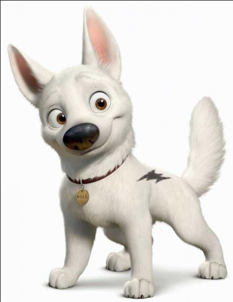 Comment s'appelle ce chien qui croit avoir des super-pouvoirs ?