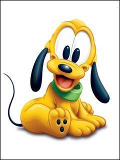 Qui est ce chien qui est le fidèle compagnon de Mickey ?