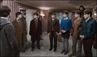Qui donne l'idée d'utiliser des leurres pour amener Harry au Terrier juste avant sa majorité ?