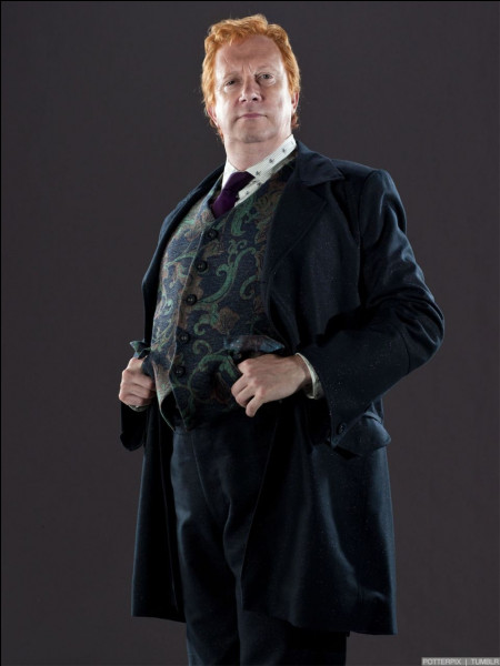 Combien Arthur Weasley a-t-il de petits-enfants ?