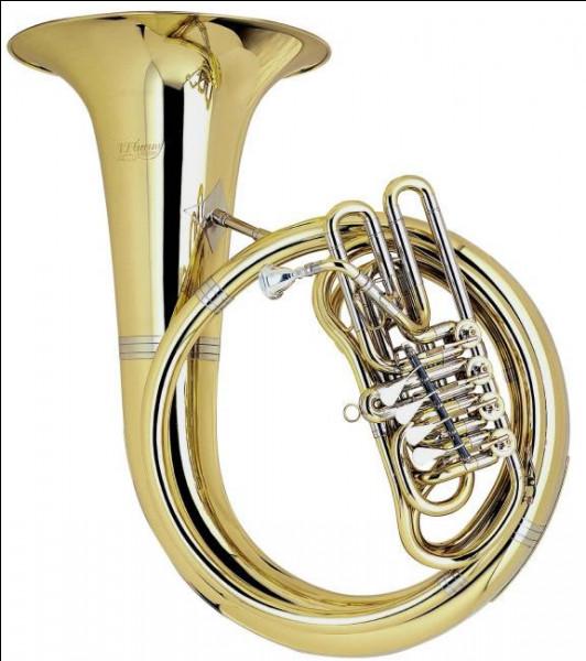 Quel est cet instrument ?