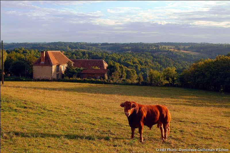 """Parmi ces villages de Corrèze, lequel nomme-t-on couramment """"la perle du Limousin"""
