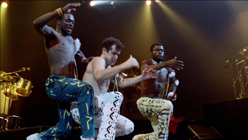 """Quel chanteur surnommé le """"Zoulou blanc"""", popularise la musique sud-africaine avec les titres """"Scatterlings of Africa"""" et """"Asimbonanga"""" ?"""