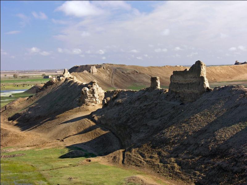 Connue sous le nom de Bactres dans l'antiquité, quelle ville du nord de l'Afghanistan est décrite comme « la mère des villes » par les Arabes ?
