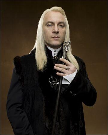Quelle chaussette Harry Potter glisse-t-il dans le journal de Tom Jedusor avant de le rendre à Lucius Malefoy ?