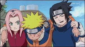 Vers la fin de la saison 1, Naruto et son équipe passent un examen pour être des vrais ninjas, Lequel ?