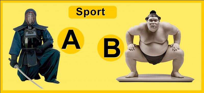 Quel sport a besoin d'un dohyo ?