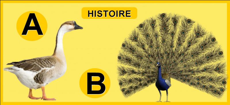 Selon les écrits de Tite-Live, quels animaux auraient averti les Romains de l'arrivée des Gaulois à Rome, en 390 avant J-C ?
