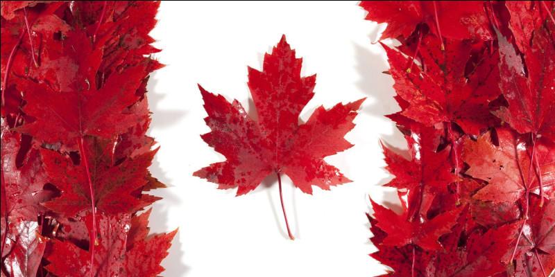 Quel est le pays qui a un drapeau où est dessinée une feuille d'érable ?