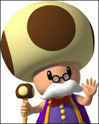 Qui est le champignon avec des moustaches ?