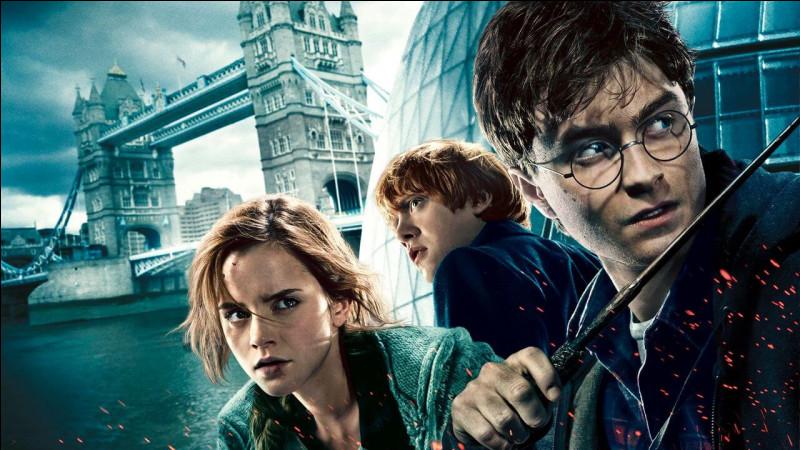 Qui préfères-tu dans ''Harry Potter'' ?