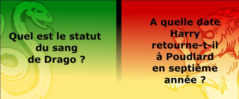 Toutes les questions de Drago sont en vert et à gauche : les réponses le concernant sont à gauche et en vert.Toutes les questions de Harry sont en rouge et à droite : les réponses le concernant sont à droite et en rouge.