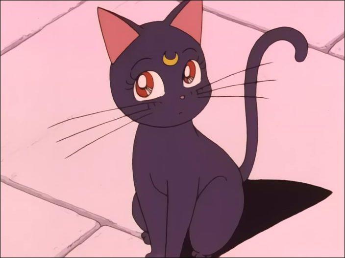 Qui est ce chat noir avec une lune jaune sur la tête ?
