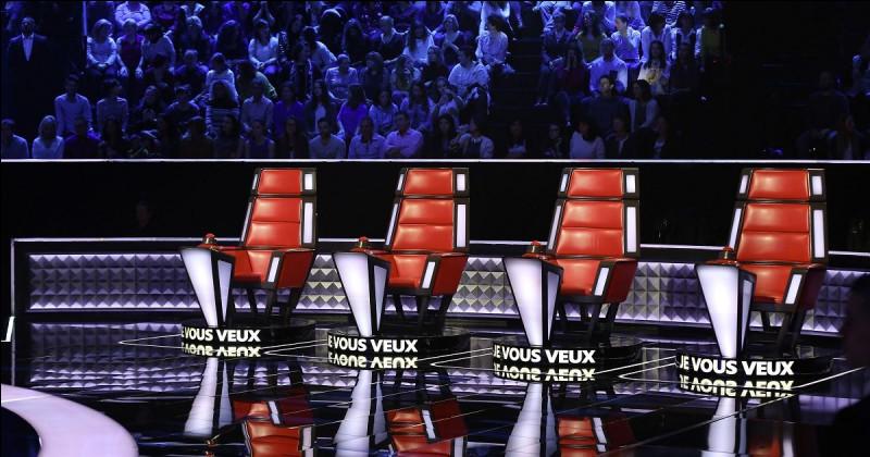 """Lequel de ces chanteurs a déjà été coach de """"The Voice"""" ?"""