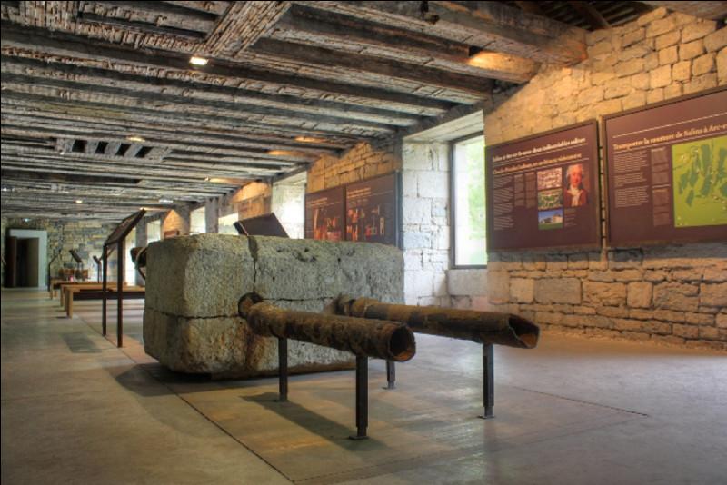Pourquoi la canalisation qui reliait la Grande Saline à la Saline Royale d'Arc-et-Senans s'appelait-elle un «saumoduc» ?
