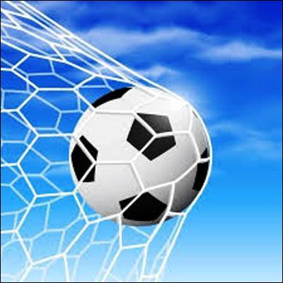 Quel footballeur détient le record du nombre de buts marqués sur une année civile ?