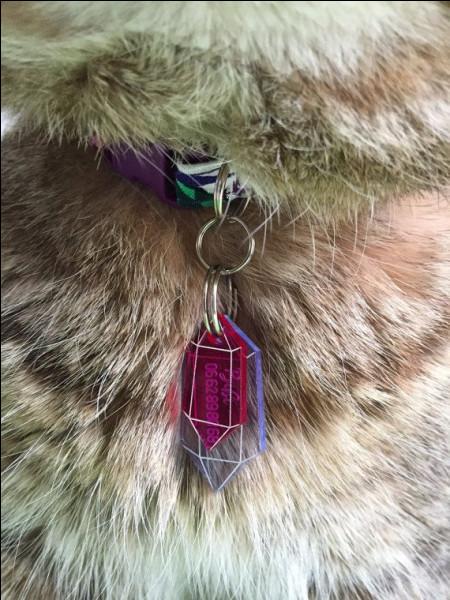 Tous les membres du clan doivent porter un collier composé d'un cristal.