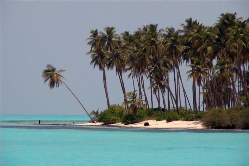 Quelle mer du nord-ouest de l'océan Indien, baigne la côte de Malabar et la côte occidentale du Sri Lanka ?