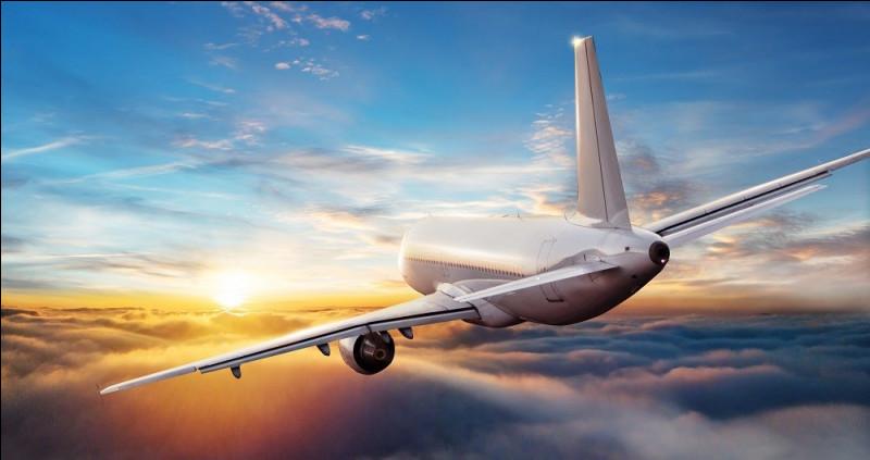 Le saumon est l'extrémité de l'aile d'un avion.