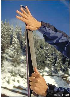 En ski de randonnée nordique, une « peau de phoque » désigne la languette autocollante antirecul que le skieur pose sur la semelle du ski. Un autre terme existe pour la désigner :
