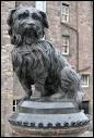 Ce petit skye-terrier est devenu célèbre et une statue a été érigée en son honneur. Ce chien était tellement attaché à son maître qu'après le décès de celui-ci, il ne quitta jamais sa tombe. Il symbolise donc la loyauté, la fidélité et l'amour qu'un chien peut avoir pour son maître. Dans quelle ville trouve-t-on cette statue ?