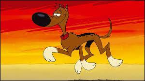 Comment s'appelle le chien nonchalant et paresseux qu'on retrouve dans les albums de bandes dessinées de Lucky Luke ?