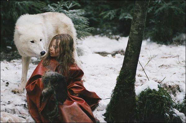 Quel est le titre du livre de Misha Defonseca, paru en 1997 et adapté au cinéma par Véra Belmont en 2007, qui raconte le périple de Misha, une petite fille juive qui va parcourir l'Europe nazie et intégrer une meute de loups ?