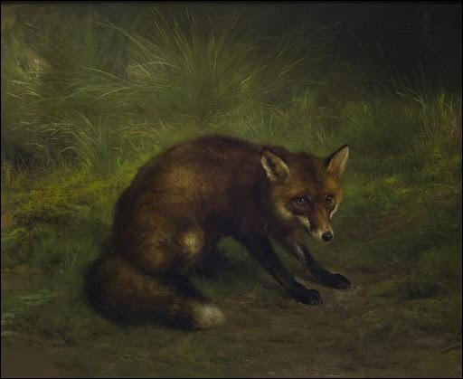"""À qui doit-on """"Étude de renard"""" ?"""