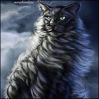 Quel chat a tué Pelage de Granit ?