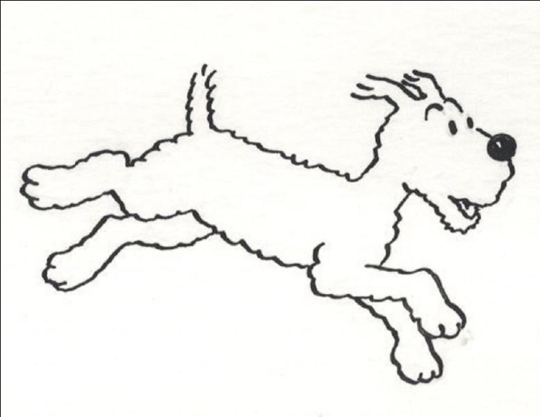 Quelle est la race de Milou, son chien ?