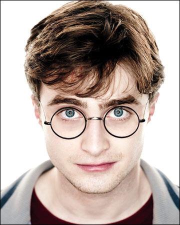 Dans quelle maison est Harry Potter ?