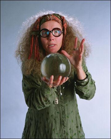 Dans quelle maison est Sibylle Trelawney ?