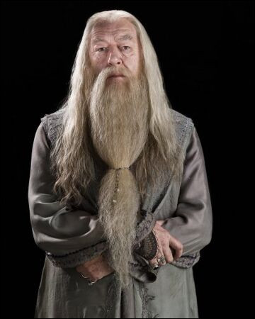 Comment appelle-t-on les friandises que Albus Dumbledore proposes à Harry Potter quand celui-ci vient le voir dans son bureau ?