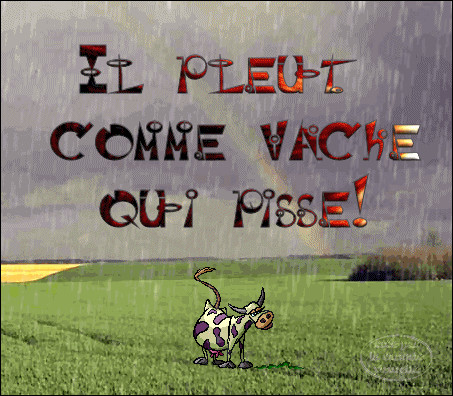 """Et enfin """"il pleut des cordes !"""" en France, alors qu'en Angleterre ..."""