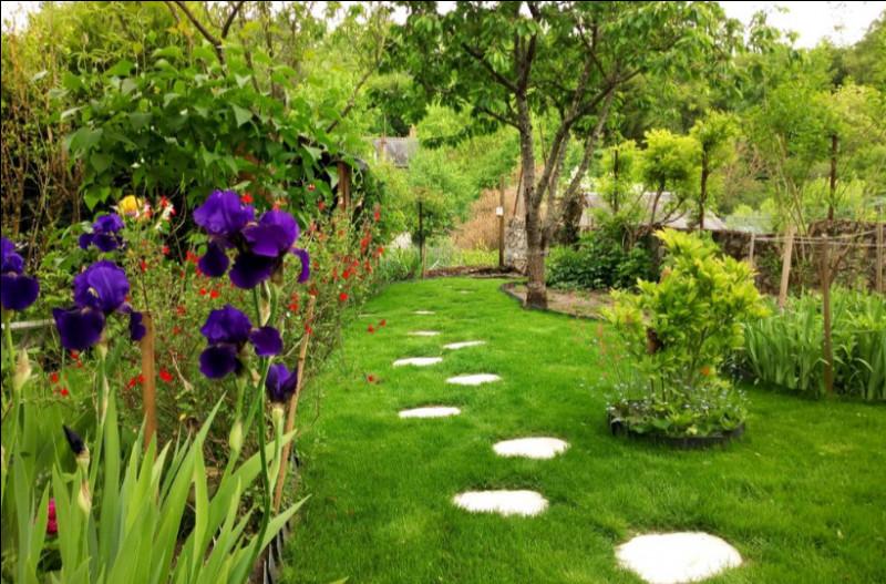 Comment dit-on un jardin ?