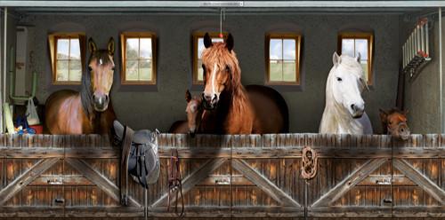 Le cheval : vrai ou faux ?