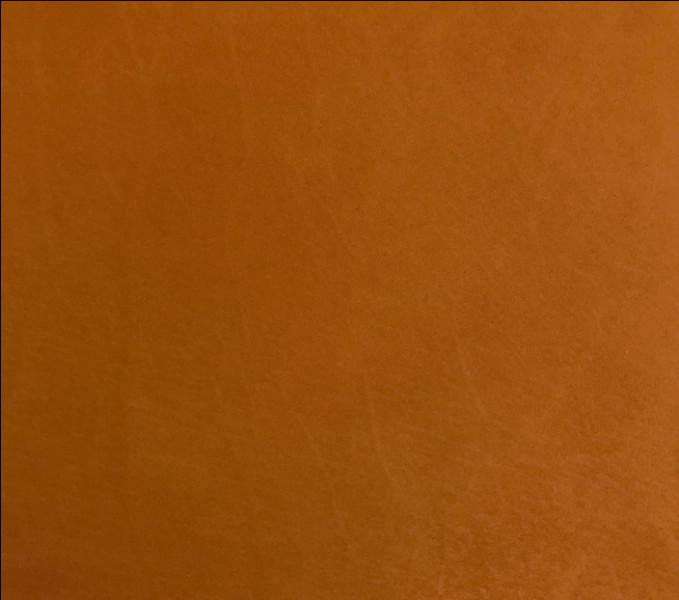 Comment dit-on la couleur marron en anglais ?