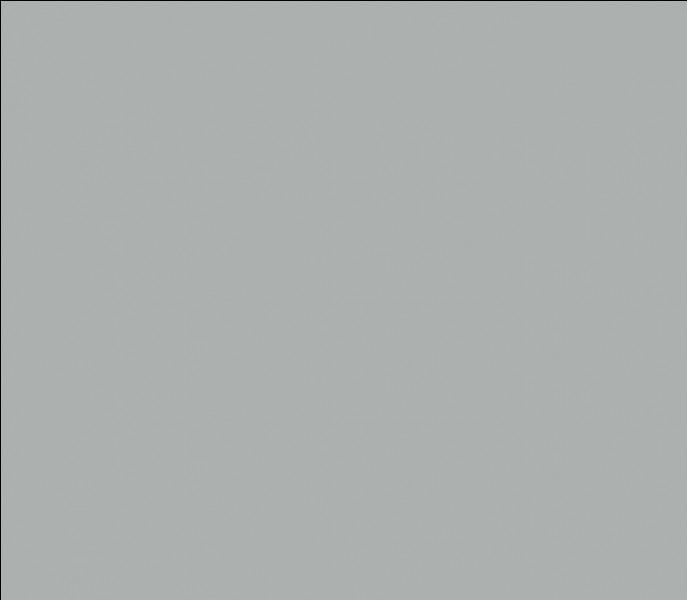Comment dit-on la couleur grise en anglais ?